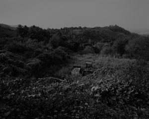 The white shaded backyard_#01 Yuncheon