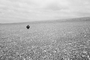 Pebble Beach, crouching