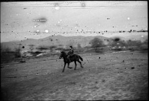 horse ride at the chechen/georgian border