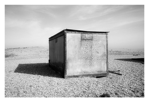 Dungeness #11