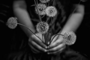 Wishing Weeds
