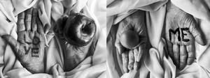 Hands'love