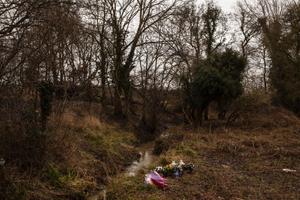 Murder #201, Evaldas Svolkinas, Romford