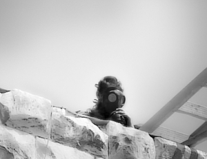 Former Israeli settlement of Sanur, West Bank, now Palestinian Authority (2005). A child-settler, wearing a gas mask, looks down from the besieged fortress as Israeli policemen prepare for the final assault to evict him and his other hundred and some companions.