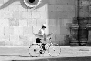 Freedom -Murcia