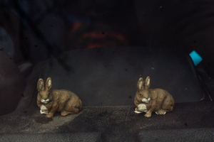 Toy hares are seen on a dashboard of a car belonging to coursing passionate. National Coursing Meeting,  Clonmel, Co. Tipperary, Ireland. 30 Jan 2016.
