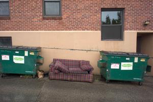 Abandoned Sofa #12