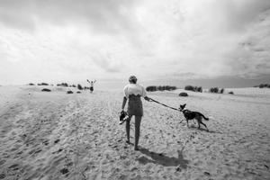 Oceanlovers