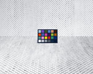 Macbeth Color-Checker Decoy, 2015