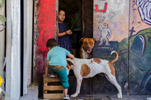 Tepito - Kids and Dogs