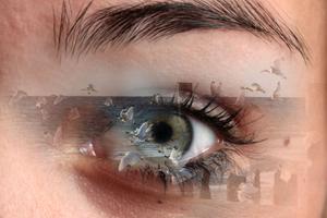 Through my eyes 9