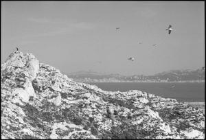 Frioul Island . Marseille
