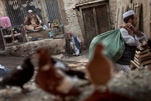 Afghan men seen inside a bird market, during the lead up to Afghan presidential elections, in Kabul, Afghanistan on August 16, 2009. © Adam Ferguson