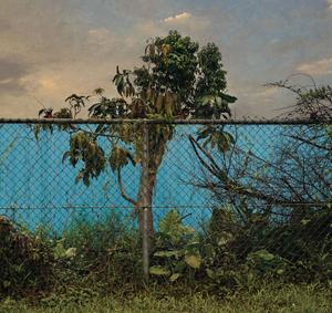 Transient Landscape # 1