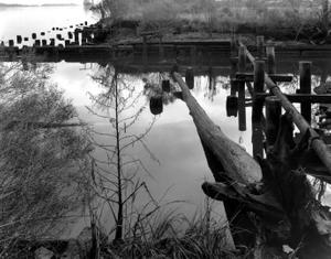 Dawn, Savannah River, GA