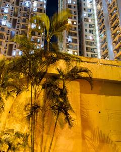 Hong Kong night 5