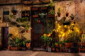 Christmas lights, El Born, Barcelona, December 2015.