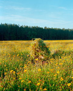 Ghillie Suit 2 (Flowers), 2011 © Jeremy Chandler