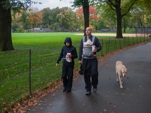 Dog Walking Early Fall Morning