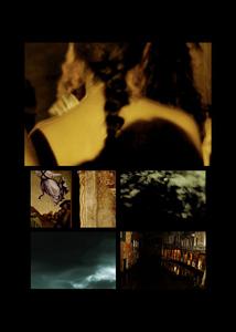 N°135 - Après vous - Un ange passe 2 - 2011