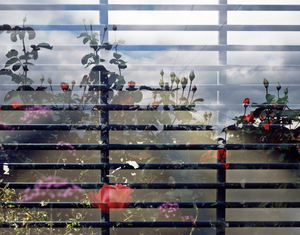 [Games # 3] – Perimeter Fence with Blossom Detail, Green Way/Carpenters Road/Victoria Park, London 2012