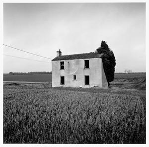 'Metheringham Heath'. 2015