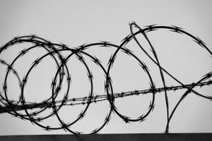 Calligraphy, Razor Wire