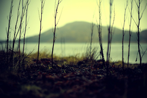 Isle Of Skye #165