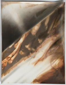 "Room Study No. 43, 2014, unique silver gelatin skiagram + chemigram, 14""x11"""