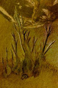 Sand Plant on Mars