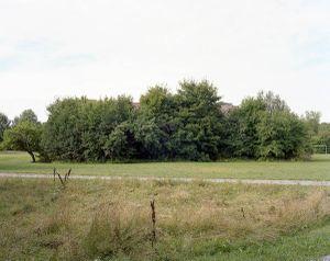#98 Hammarbyhöjden, 2013