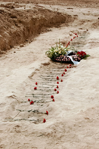 Homage: Flowers in the trench.