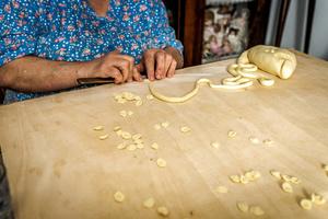 Fresh pasta maker