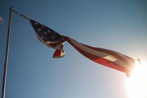 Pledge Allegiance 5