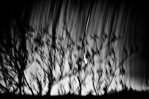Eschaton - Matthias Koch