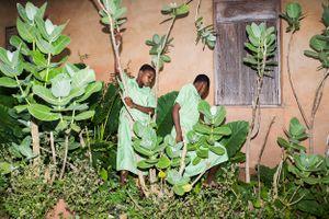Kehinde Temitope and Taiwo Oluwabori