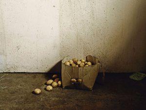 Inside the Bester's home,Vermaaklikheid, 2013. Courtesy of Stevenson Gallery, Capetown/Johannesburg and Yossi Milo, New York.