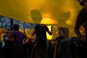 Great Yellow ribon