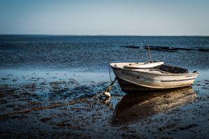 Cape Cod, Massachusetts. © Kate Vredevoogd
