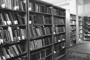 """project """"Libraries in Tbilisi"""""""