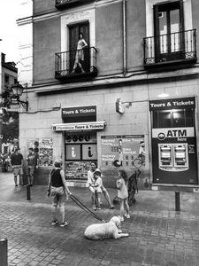The Mannequin. Madrid.