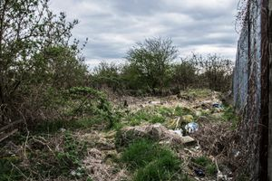 Neglected land