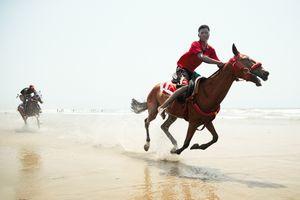 Horses Charging 2