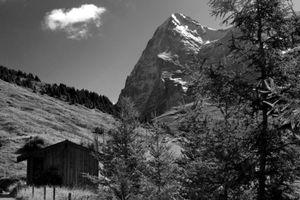 Eiger - Swiss Alps
