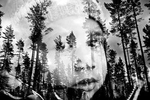 Vic among the trees