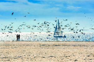 Beach 42