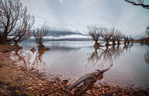 The Willows of Glenorchy, Otago New Zealand