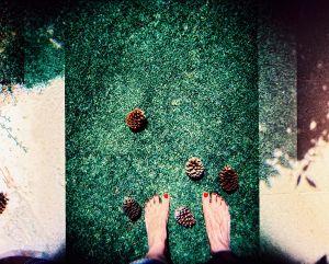 Footloose grass