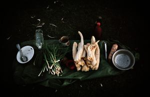 Feast on the Go © Dmitry Gomberg