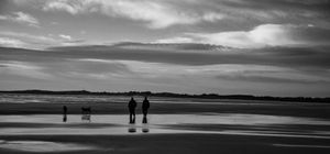 Beadnell Bay dog walkers